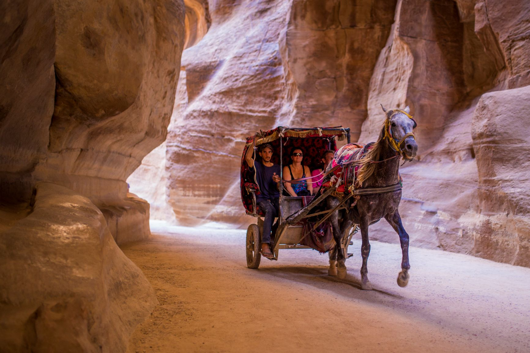 Petra Hours Carriage